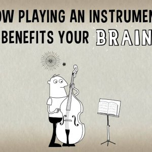 How playing an instrument benefits your brain - Anita Collins - YouTube